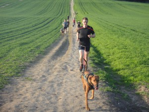 Handy directional canicross commands when running with your dog
