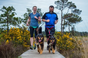 Use directional commands when running with your dog