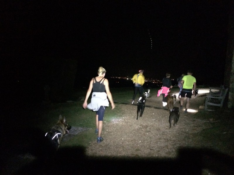 Canicross in the dark is safer in a group and much more fun